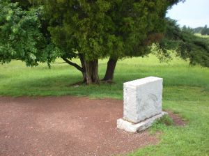 Location of cluster of tree trunks relative to the current Bartow monument